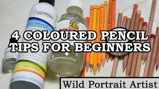 4 Tips for Beginner Coloured Pencil Artists