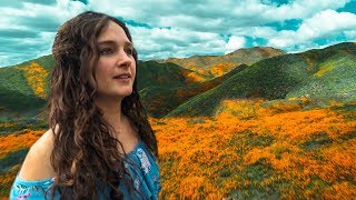 CALIFORNIA POPPIES SUPER BLOOM - VLOG #77🌷🤩