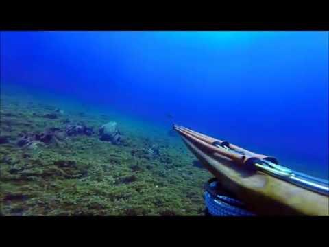 Chasse sous marine Martinique 2014 avec Claude chasseur  2