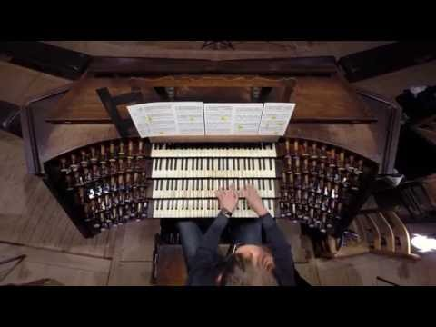 Guy Weitz  the complete organ works on AEOLUS