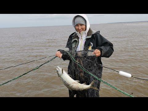 Рыбалка на песчаной