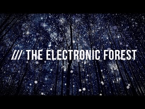 10.12.2016 FCKNG SERIOUS Label Night @ The Electronic Forest, Mauritius - Aftermovie