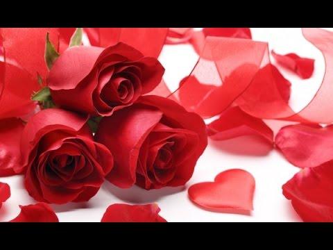 Valentine's Day Customs in America - YouTube