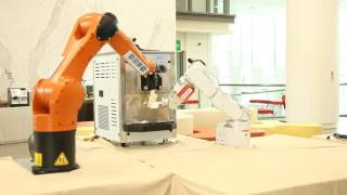 Robotic Arms with Vision Sensor and Inertial Measurement Unit