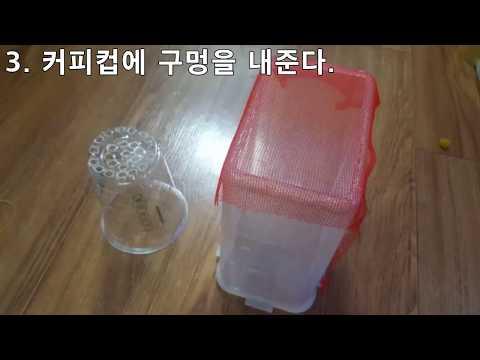 【Amazon TV】 구피 치어통 집에서 만들기