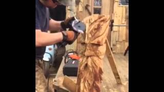 Evolution Power Tools Rage Twin Carving @woodlawcarvngs