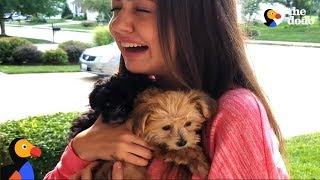 Girl FREAKS OUT After Puppy SURPRISES | The Dodo