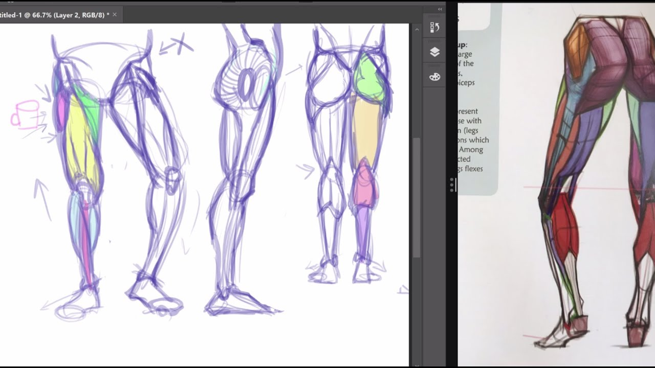 How to draw Legs & Feet - YouTube