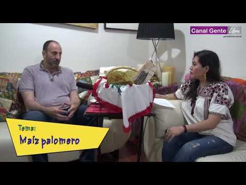 UN MUNDO RARO Entrevista a Rafael Mier Fundador de Tortilla de Maíz Mexicana