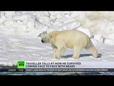 Bear-ly Alive: Arctic scientists surrounded by polar bears rescued after two-week siege