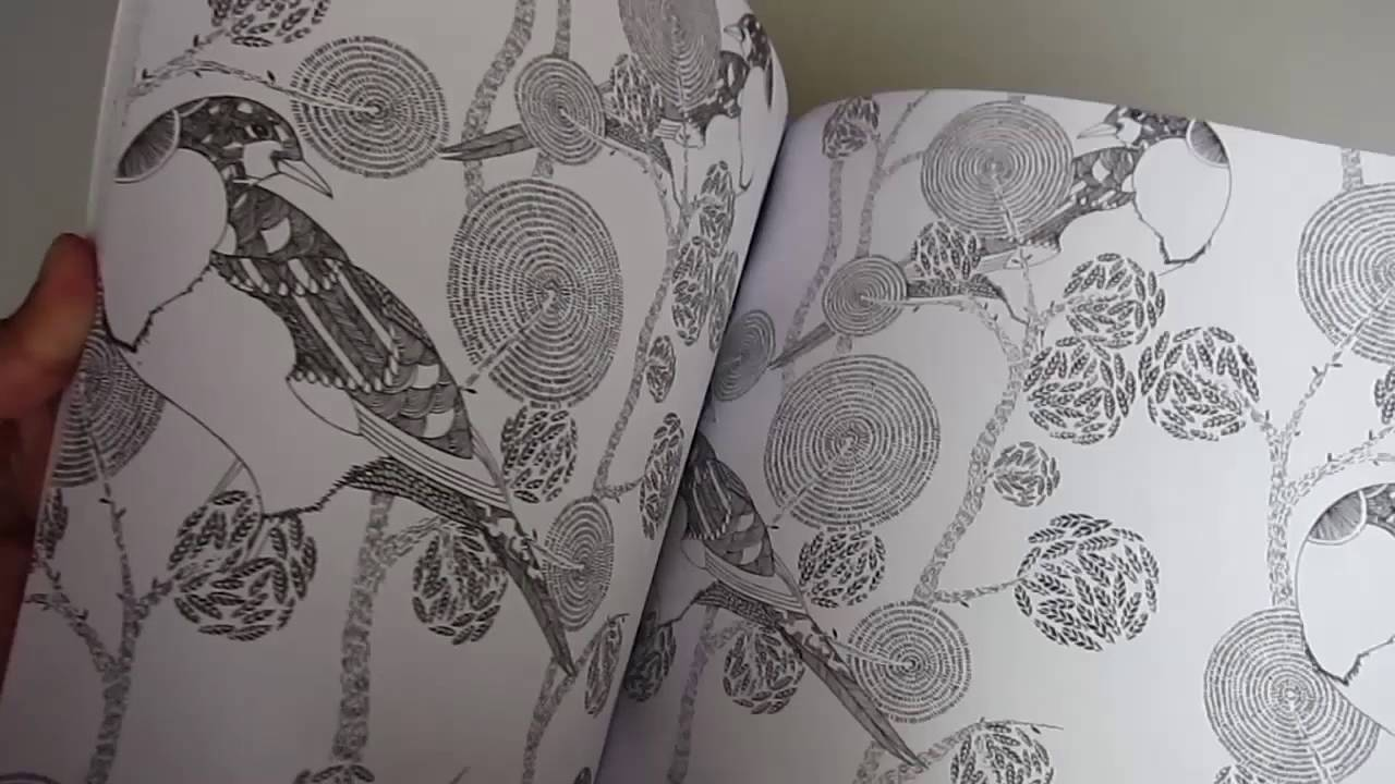Libro para pintar ANIMAL KINGDOM - coloruring book - YouTube