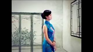 Cheongsam fashion (Hello China #86)