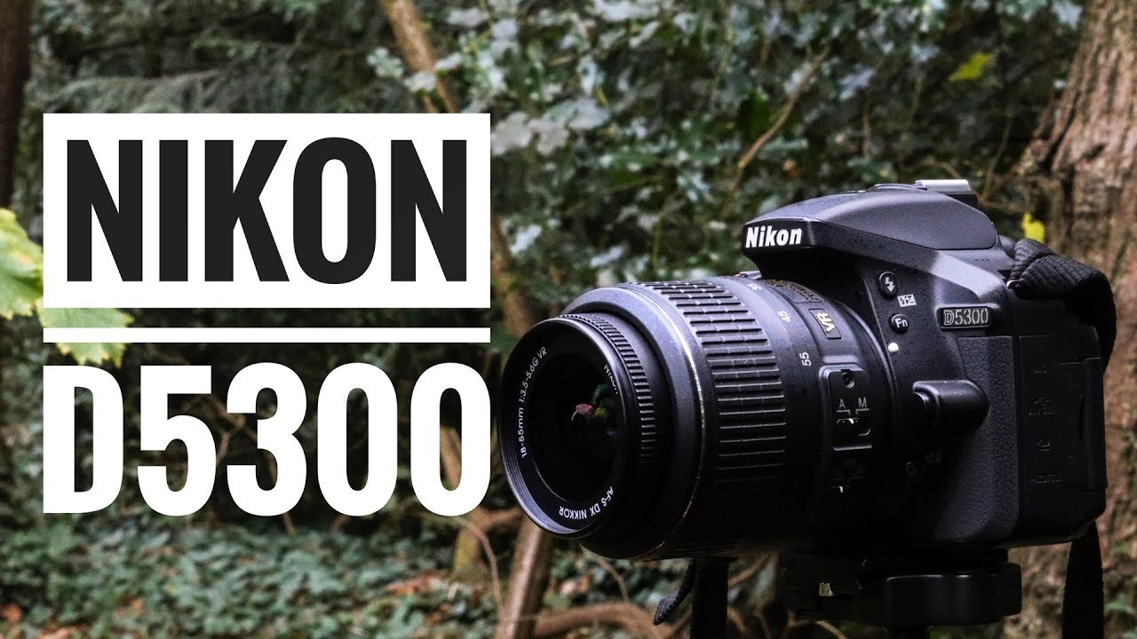 Nikon D5300 in 2019: A Simple Yet Great Starter DSLR Today