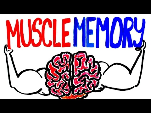 Muscle Memory Explained