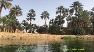 تصويري ل شعيب المشقر في المجمعة  1438/7/14