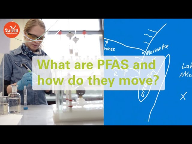 What are PFAS and how do they move in the environment?