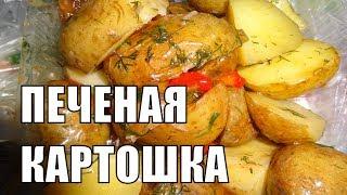Печеный картофель полезен или вреден для здоровья