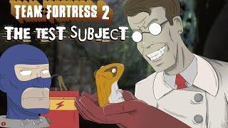 Team Fortress 2 as Valve's Guinea Pig