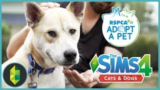 REAL LIFE CATS & DOGS | Visiting the RSPCA in Yagoona #AdoptDontShop #Sims4RSPCA thumbnail