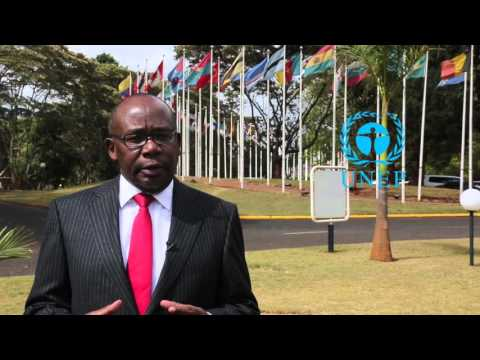 Prof. Githu Muigai,The Attorney General of Kenya on  Environment Rule of Law