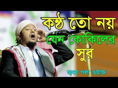 Bangla Waz 2017 Muhsinul Karim Bin Kashem কন্ঠ নয় যে কোকিলের সুর