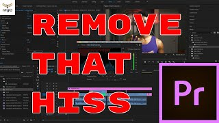 How to remove hissing sound from RODE Video Mic Go in Adobe Premiere Pro CC 2019  2 Minutes