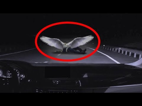 5 TERRIFYING Encounters Caught In Highways!