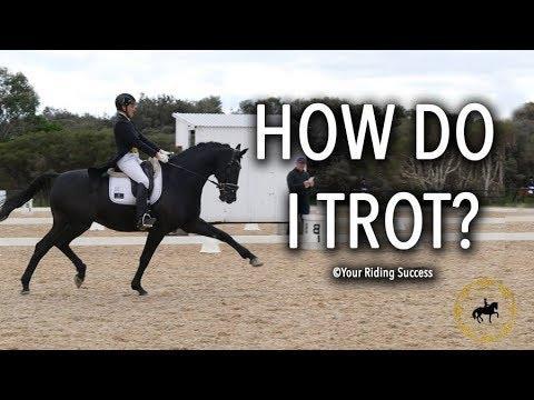 How To Trot A Horse (Dressage Mastery TV Ep245)