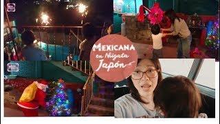 mi Hermano opina sobre el espanol de Mauro/Navidad en Mexico/Mexicana en Niiata Japon