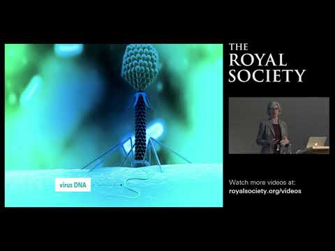 Re-writing the Code of Life: CRISPR Systems and Applications of Gene Editing