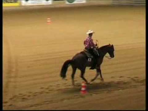 Western Riding Felix Schnabel Instant Inpulse