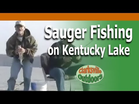 Clarksville tn outdoors sauger fishing youtube for Buy tennessee fishing license