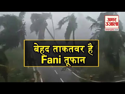Fani तूफान की बढ़ रही रफ्तार से दहशत   Fani Cyclone   Phani Cyclone   Amar Ujala