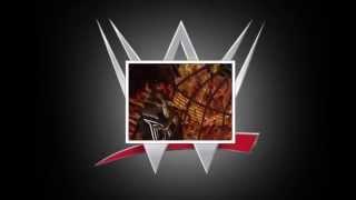 WWE New Years Revolution 2005 Pyro