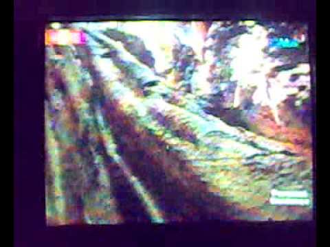 NABCA BAT CAVE - Pagudpod, Ilocos Norte