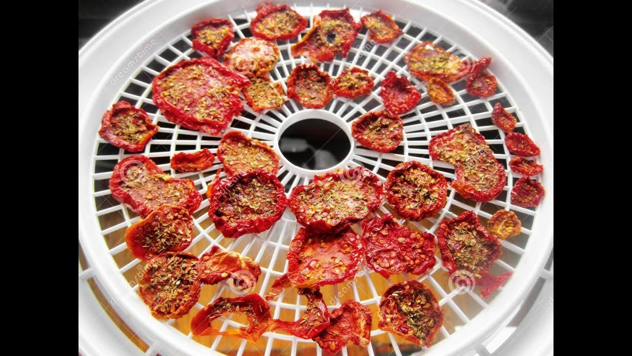 Best Food Dehydrator Reviews On The Market 2015 Youtube