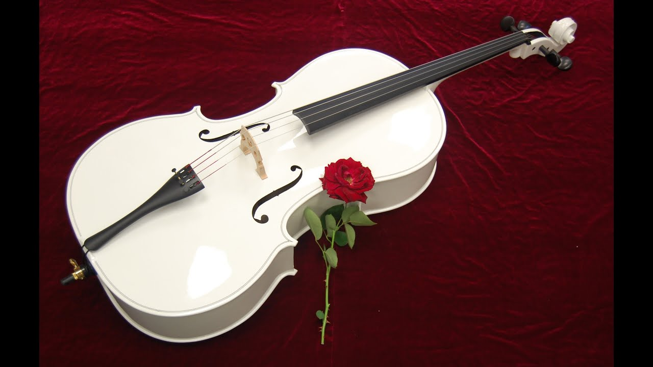 Самая сексуальная струна на скрипке