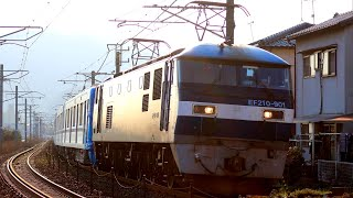 【鉄道動画】528 EF210-901牽引 東京メトロ17000系 甲種輸送 権現第6踏切 通過