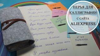 ✍Обзор перьев для каллиграфии Tachikawa✍Распаковка посылки с Aliexpress✍Calligraphy pen