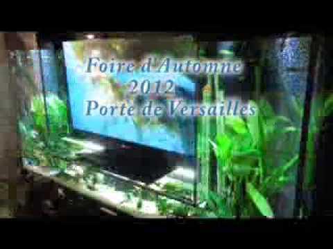 F rie d 39 automne poissons aquarium salon porte de for Foire de versailles
