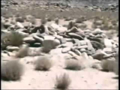 Archaeological evidence for the Biblical Exodus