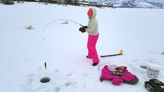 Ice Fishing Pineview Feb 2020 The Jaw Jacker vs The Fishinator