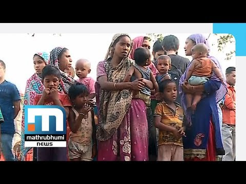 Rohingyan Refugees In Misery In Kalindi Kunj| Mathrubhumi News