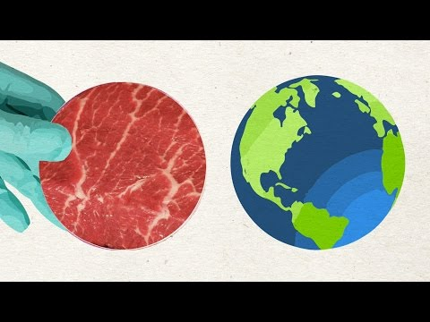 Should Beef Come From A Petri Dish?