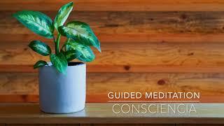 CONSCIENCIA: Meditacion Guiada de 1 Minuto