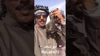 كشته وجمريه وكبسات وقنص في النفود وبر السعوديه اخوكم ابو سعد