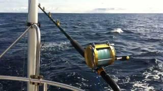 Fishing Setup - Fishing from a sailboat