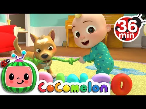 Bingo + More Nursery Rhymes \u0026 Kids Songs - CoComelon