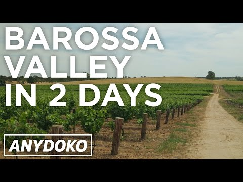 Awesome Wine Tasting In Australia's Barossa Valley