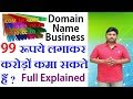 How To Make Profit Buying And Selling Domains | Domain Name Business Explained | Hindi